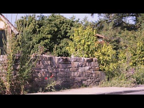 Naturgarten e.V. - Naturnaher Garten für Wildpflanzen und heimische Tiere - YouTube
